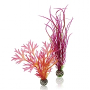 biOrb Red & Pink Plant Set Medium