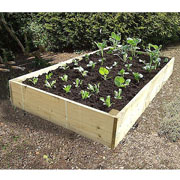 Deluxe Extra Deep Wooden Raised Vegetable Bed 1.8x.0.9mtr