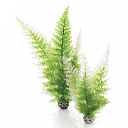 biOrb Aquatic Winter Ferns Plant Set