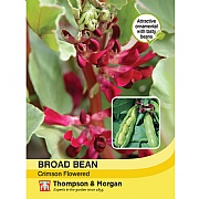 Thompson & Morgan Broad Bean Crimson Flowered Seeds