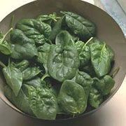 Spinach Picasso - 300 Seeds
