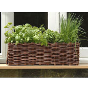 Willow Window Box Planter - Natural
