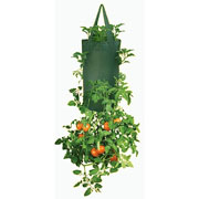 Hanging Tomato Planter (Twin Pack)