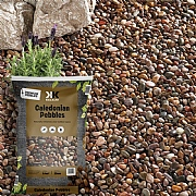 Kelkay Caledonian Pebbles 14-20mm Large Bag