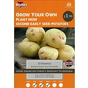 Bonnie Second Early Seed Potatoes Taster Pack