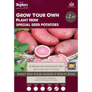 Highland Burgundy Red Main Crop Seed Potatoes Taster Pack