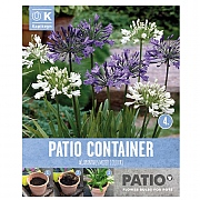 Garden Container Pack Agapanthus - Out Of Africa - 3 Bulbs