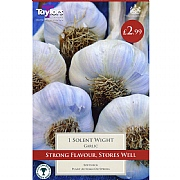 Grow Your Own Solent Wight Garlic
