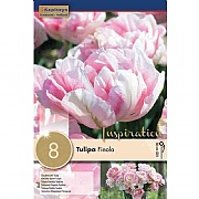 Tulip Double Finola - (8 Bulbs)