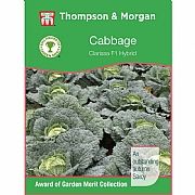 Thompson & Morgan Award of Garden Merit Cabbage Savoy Clarissa