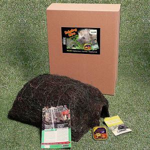 Hedgehog Care Starter Pack
