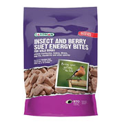 Insect and Berry Suet Energy Bites