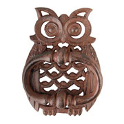 Cast Iron Owl Door Knocker