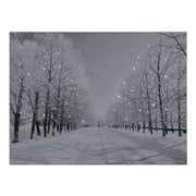 Snowy Avenue Pre Lit LED Canvas 40x30cm