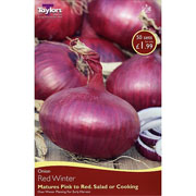 Onion Red Winter (50 Sets)