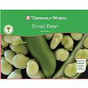Thompson & Morgan Award of Garden Merit Broad Bean De Monica