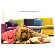 Scruffs Snuggle Blanket - Red