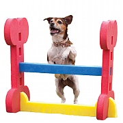 Rosewood Small Dog Agility Hurdle