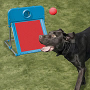 Pet Flyball Set