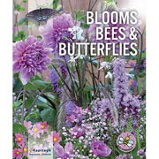 Blooms, Bees & Butterflies Violet / Pink (Pack of 30)