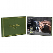 Country Matters Equine Placemats - Set Of 6
