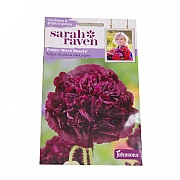 Mr Fothergills Sarah Raven Cutflower Collection Poppy Black Beauty