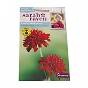 Mr Fothergills Sarah Raven Wildlife Collection Knautia Red Cherries