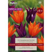Tulip Combinations Champagne Flutes (15 Bulbs)