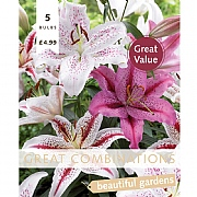 Lilium Oriental Tiger White & Pink Great Combinations Pack - 5 Bulbs
