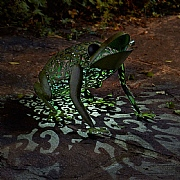 Smart Solar Metal Silhouette Frog