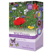 Wildflowers Cornfield Annual Mix Scatter Pack