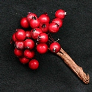 Gisela Graham Red Holly Berry Bunch 8cm
