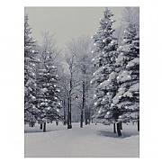 Woodland Snow Scene LED Canvas 50x70cm