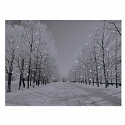 Snowy Woodland Street LED Canvas 70x50cm