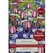 Fairy Walk Classic Combinations (50 Bulbs)