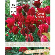 Great Combination Tulip Red Shades (15 Bulbs)