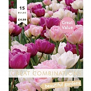 Great Combination Tulip Double Pink, Purple & White (15 Bulbs)