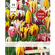 Great Combination Tulip Fireworks (15 Bulbs)