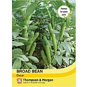 Thompson & Morgan Broad Bean Oscar Seeds