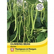 Thompson & Morgan Climbing Bean Mamba Seeds