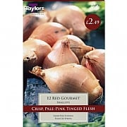 Grow Your Own Red Gourmet Shallots