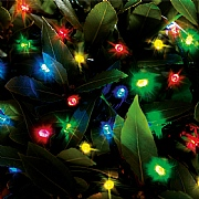 Cole & Bright 50 Multicoloured LED Dual Power String Lights