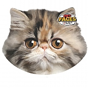 Pet Face Persian Cat Cushion