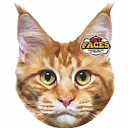 Pet Face Maine Coon Cat Cushion