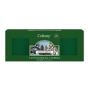 Wax Lyrical Colony Winter Spruce 3 Votive Candle Refills