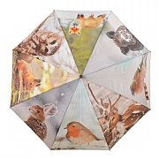 Fallen Fruits Umbrella Winter