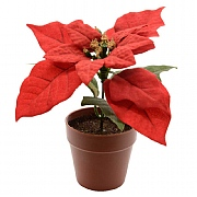 Decoris Christmas Red Silk Poinsettia in Pot 14cm