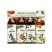 Bramley & Gage Fruit Liqueur Forager's Selection