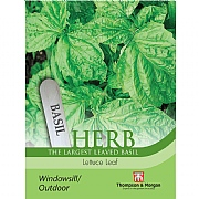 Thompson & Morgan Herb Basil Lettuce Leaf Seeds