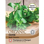 Thompson & Morgan Herb Basil Classico (Organic) Seeds